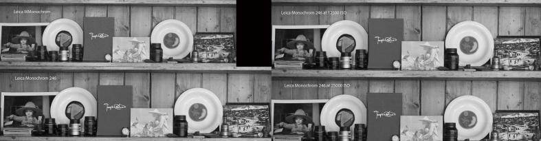 10000-25000_ISO_Monochrome